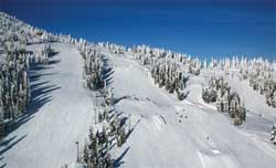 Photo courtesy Mount Washington Alpine Resort